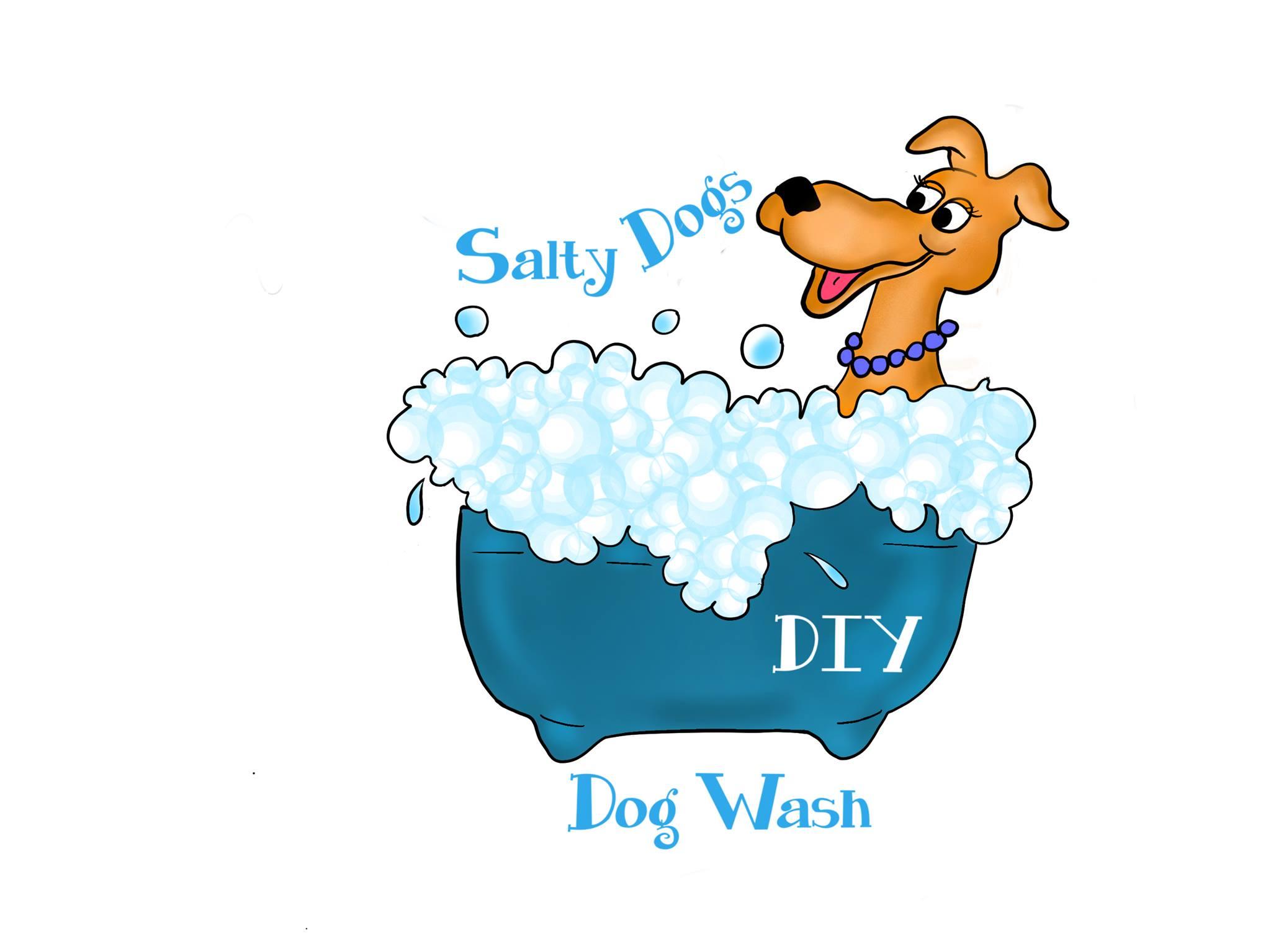 salty dog wash diy
